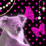 かわいいコアラのスマホ待ち受け画像をご紹介します